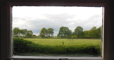 Uitzicht vanuit ons huisje